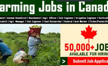 Farm Worker Jobs In Canada