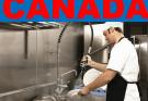 Dishwasher Jobs in Canada